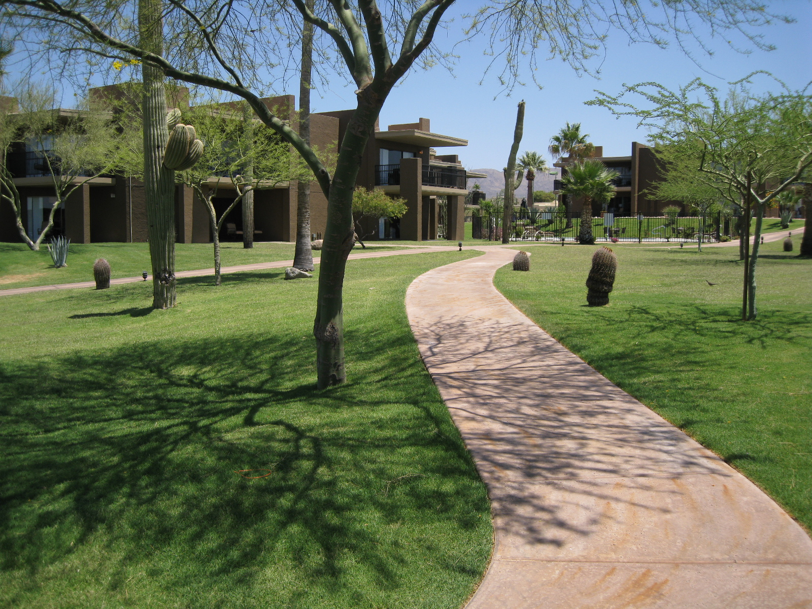the Sonoran Suites at the Carefree Inn